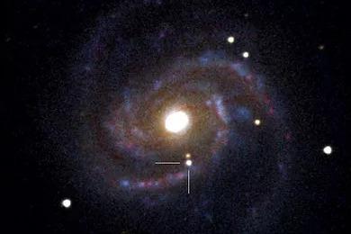 18 - SN2006X