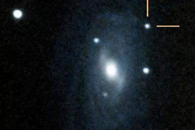 7 - SN2001dp